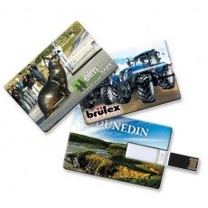 Promotional 2gb Flashdrive Cards